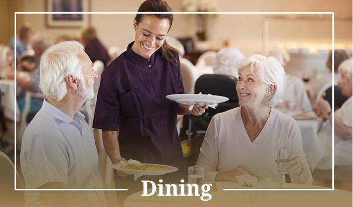 Dining Experiences